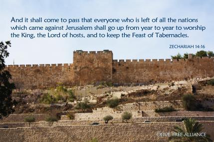 Zechariah 14.16_Eastern Gate_4x6_OTA