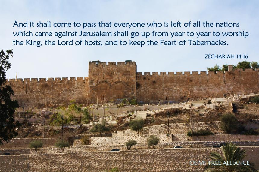 Zechariah 14.16_Eastern Gate_4x6_OTA