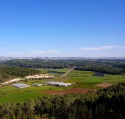 Elah Valley. Charles E. McCracken Archives © 2011.