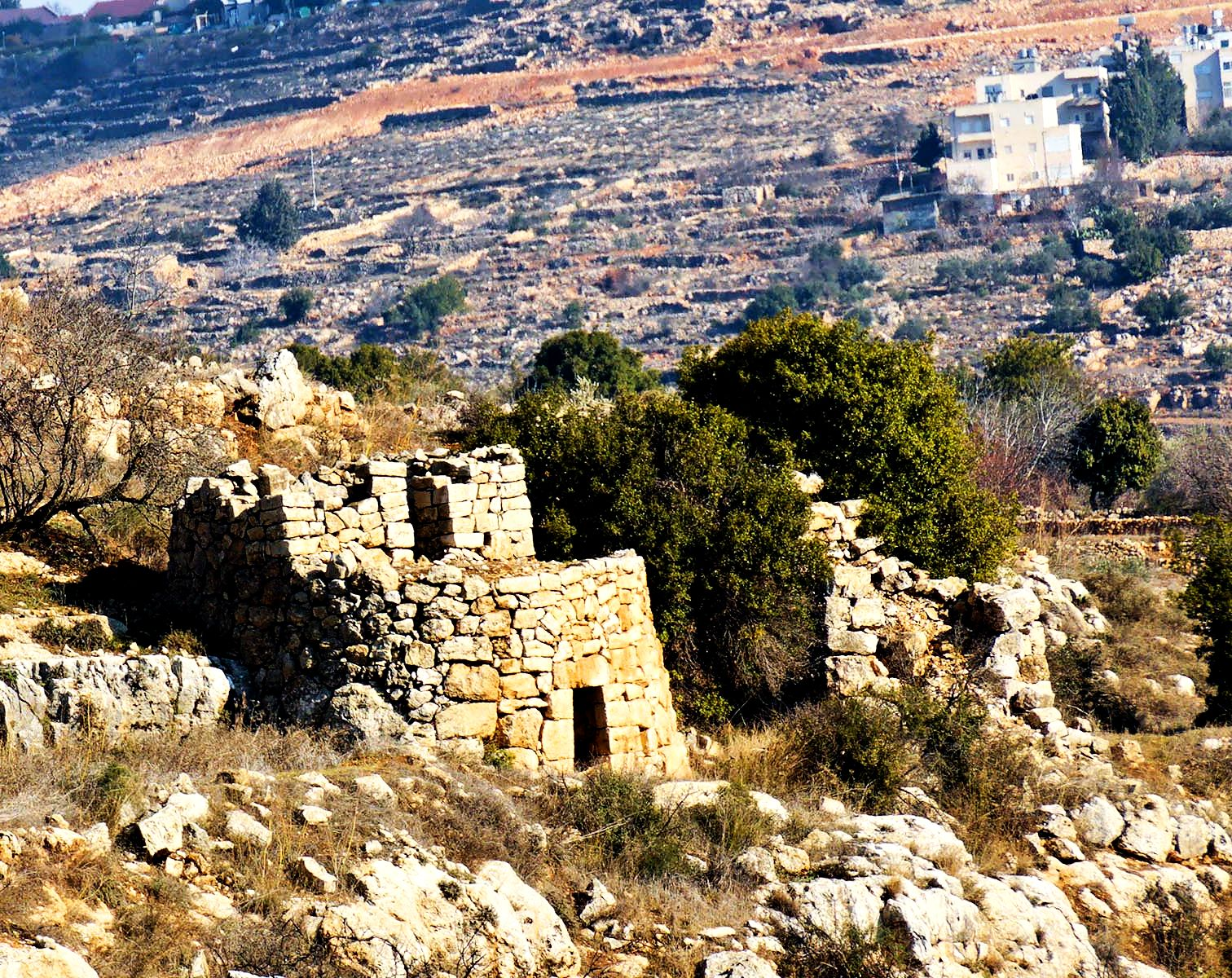 Watchtower in Judean Hills