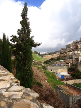View to the north from City of David