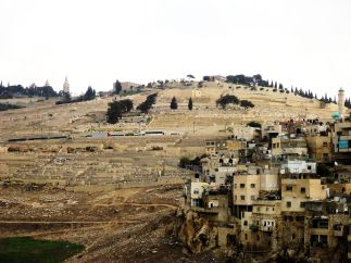 View of the Mount of Olives from King David's Palace
