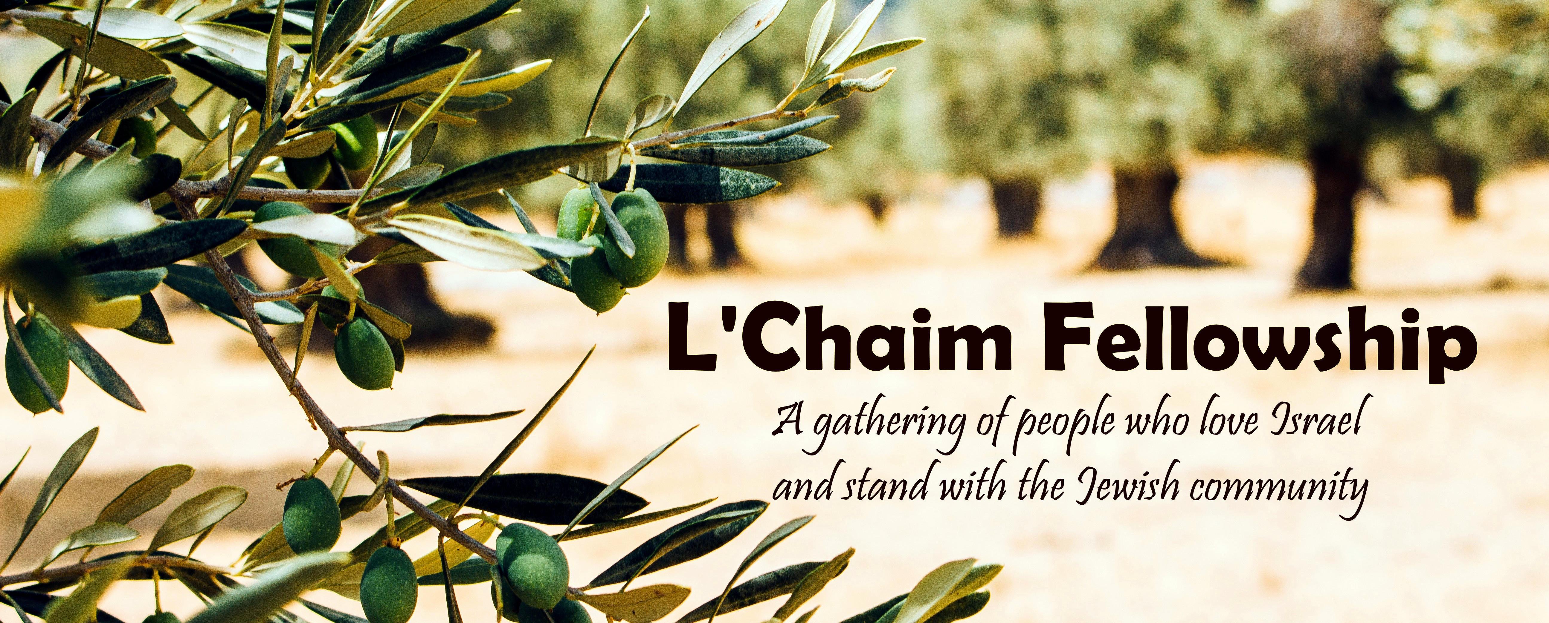 OTA L'Chaim Fellowship_Blank INVITE_fullbanner_t